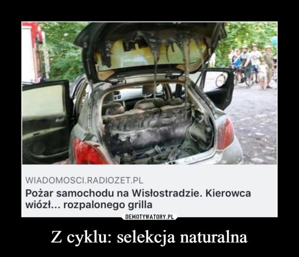 Z cyklu: selekcja naturalna –  Pożar samochodu na Wistostradzie. Kierowcawiózł... rozpalonego grilla